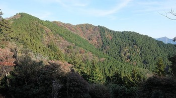 karasu-shakujou-f-one.jpg
