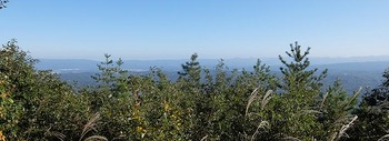 mikuni-view-1.jpg