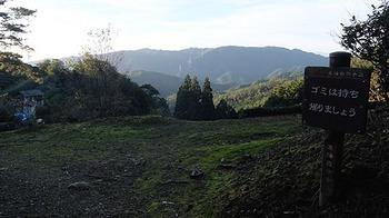shizenhodou-ue-2.jpg